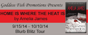 BBT Home is Where the Heat Is Tour Banner copy 2